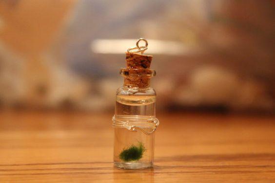 charm,miniature MARIMO fish hook aquarium , miniature aquarium  FISH HOOK deco, dollhouse mini. $8.99, via Etsy.