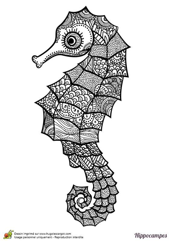 Coloriage d un hippocampe mandala coloriages de poissons et animaux marins pinterest mandalas - Hugolescargot mandala ...