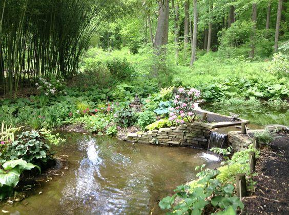 In the midst of the zen garden