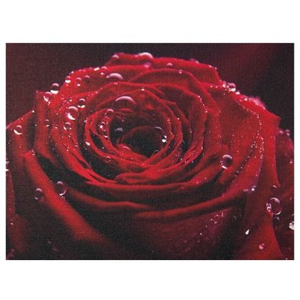 Dieses Bild verleiht Deiner Wohnung eine leidenschaftliche Note. Das Rosenmotiv repräsentiert die klassische Romantik und zaubert dir einen roten Farbklecks an Deine Wand.