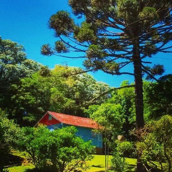 #cottage #casas #casadecampo #casasdaserra #naturelovers #spring . Gramado e Canela . RS . Brasil . by luizanacul