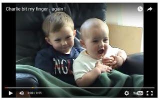 VIDEOS VIRALES : Charlie me ha mordido el dedo