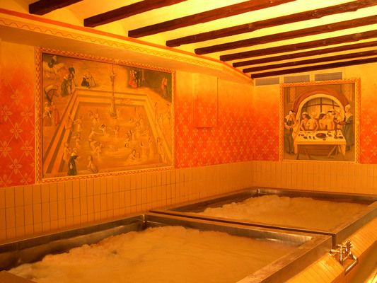 Starkenberger Beer Pools | Atlas Obscura