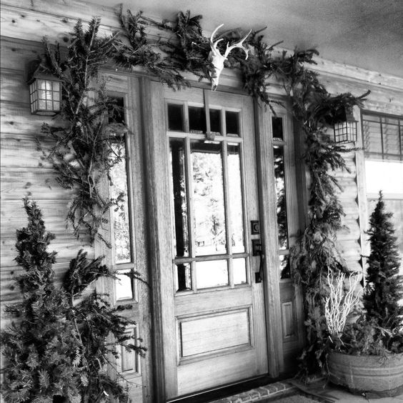 Country Christmas front door decor. Left over limbs from Christmas tree and a skull mount deer head!