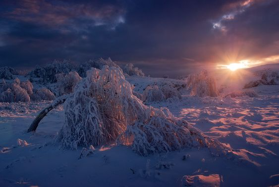 Winter photos by Korzhonov Daniil.  Nice compositions and lovely soft colors.