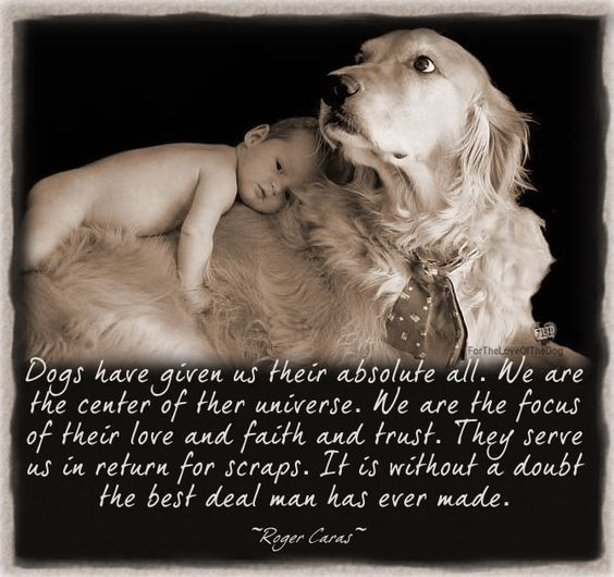 Image result for man and dog quotes