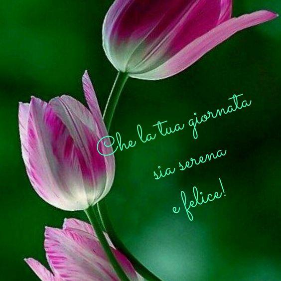 buona-giornata-fiori