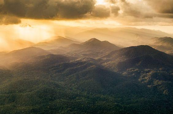 York Hovest will mit seinem Bildband zeigen, was Menschen dem Regenwald bisher...