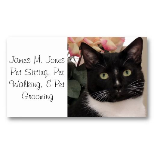 Pet sitting Pet sitting business and Business cards on