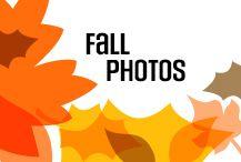 Fall colours, fall flavors, cuddle up for a festive fall photo shoot.