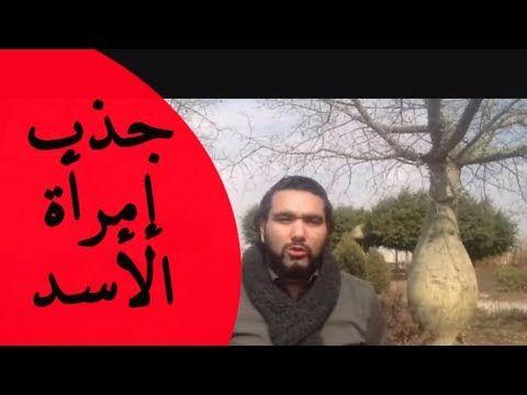 طريقة جذب إمرأة برج الأسد مع خالد رمزي Youtube Kitchen Design Design