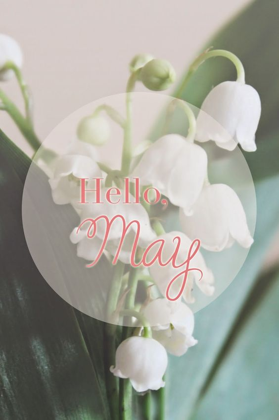 Hello, May Lily of the Valley