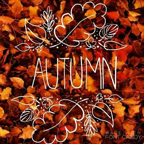autumn and fall afbeelding
