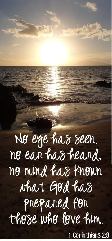 No eye has seen, no ear has heard, no mind has known what God has prepared for those who love him. ~ 1 Corinthians 2:9
