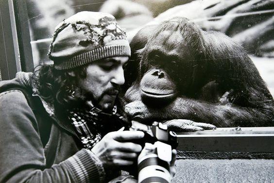 Fotógrafos muy locos que hacen todo para capturar la mejor imagen. Y tú, ¿hasta dónde llegarías?