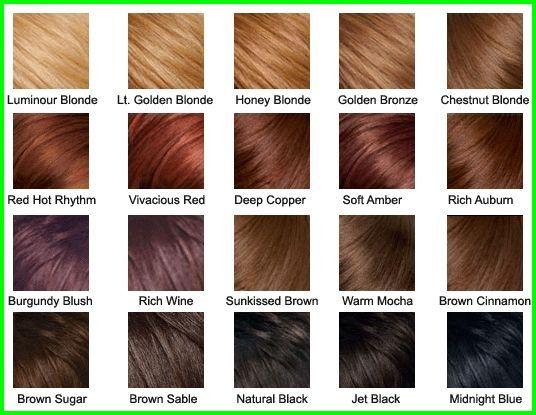 Wella Cinnamon Brown Hair Color 2767 Hair Color Palette Sunkissed Brown Brown Hair Color Chart Bronze Hair Color Hair Color Chart