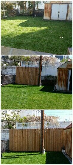Wood Cedar Fence Covering A Chain Link Fence 100 Fix