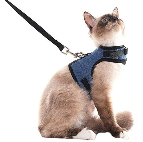 Scenereal Escape Proof Cat Harness And Leash Adjustable Soft Mesh Vest For Rabbits Puppy Kittens Catothings Cats Themed Products Catalog Cat Leash Best Cat Harness Cat Harness