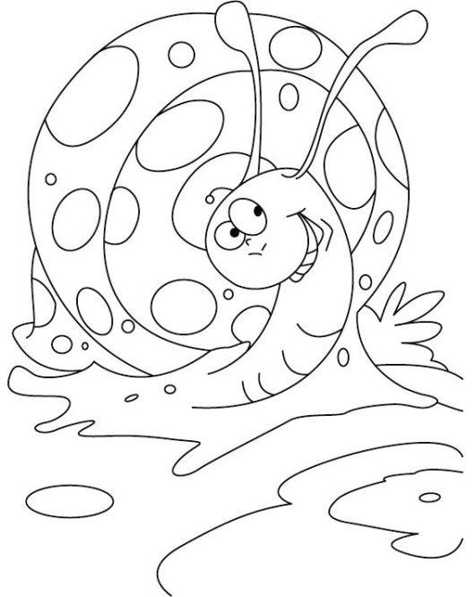 Snail Coloring Book For 3 8 Years Old Insect Coloring Pages Coloring Pages Animal Coloring Pages In 2021 Insect Coloring Pages Animal Coloring Pages Coloring Pages