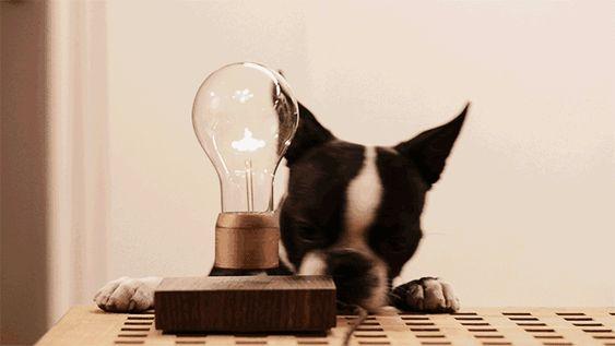 Flyte ¡Una Lámpara que Levita! - Nordic Treats