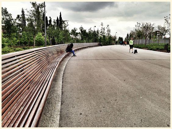 Corriendo por MadridRio  #Miniature #Schnauzer