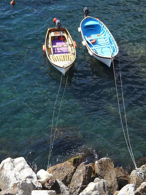 Cinque Terre, Italy. This is an amazing area of Italy. Join us on our Cinque Terre trip. See our website for all the details..