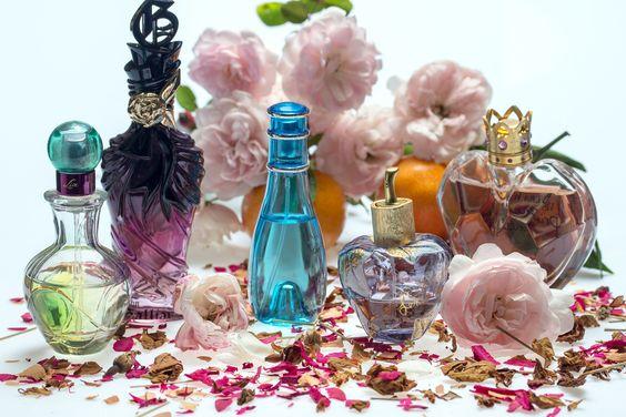 Society19 Ou Cher Du Fr Pas Parfum De Acheter Marque w8nmN0