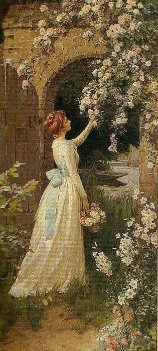 Picking Roses,  Percy Tarrant. (1879-1930) British  .....Note: He is Perhaps best known for his work as an illustrator of books such as 'Wuthering Heights' and 'Little Women',: