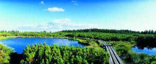 Die Seen von Lovrenc « Natursehenswürdigkeiten