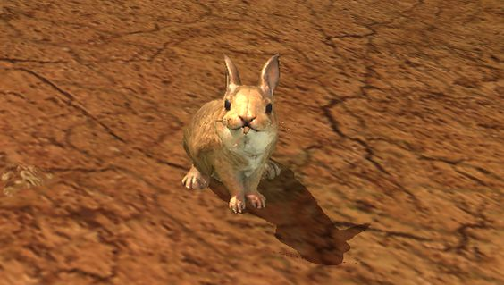 rabbit from everquest 2! (yes i play the game :3 )