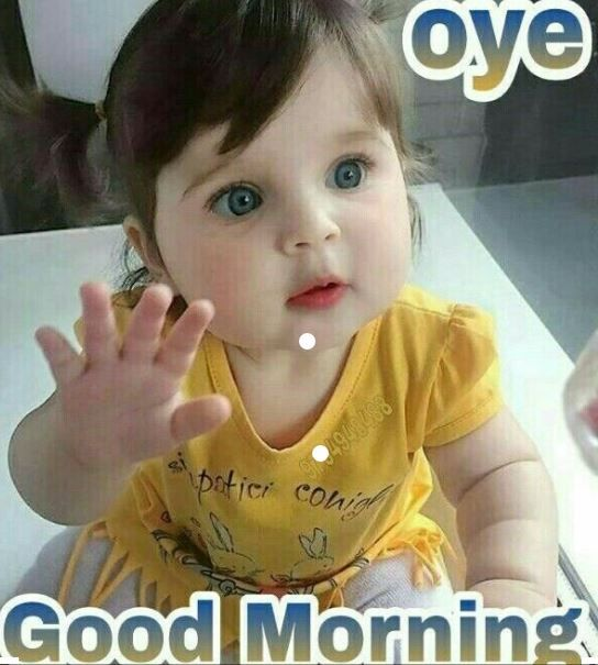 100 Best Gd Mrng Images The Biggest Collection Of Good Moring Images Good Morning Funny Pictures Good Morning Funny Lovely Good Morning Images