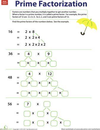 math homework prime factorization