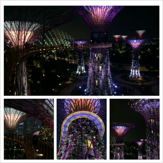 dazzling Gardens by the Bay, Singapore