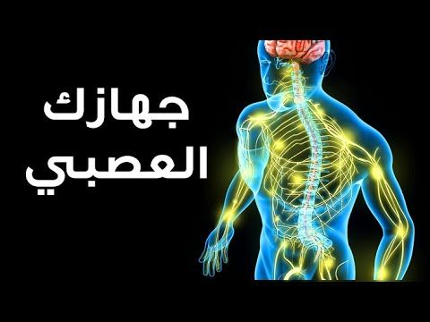 Youtube Nervous System Nervous System
