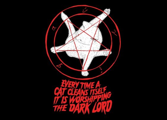"""""""EVERY TIME A CAT CLEANS ITSELF IT IS WORSHIPPING THE DARK LORD """" - Threadless.com - Best t-shirts in the world"""