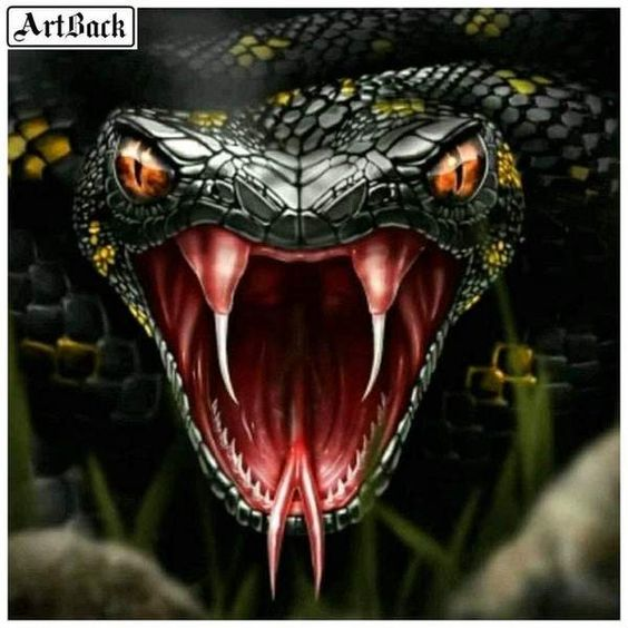 5D Diamond Painting Snake Bite Kit Offered by Bonanza Marketplace. www.BonanzaMarketplace.com #diamondpainting #5ddiamondpainting #paintwithdiamonds #disneydiamondpainting #dazzlingdiamondpainting #paintingwithdiamonds #Londonislovinit #snake #snakebite
