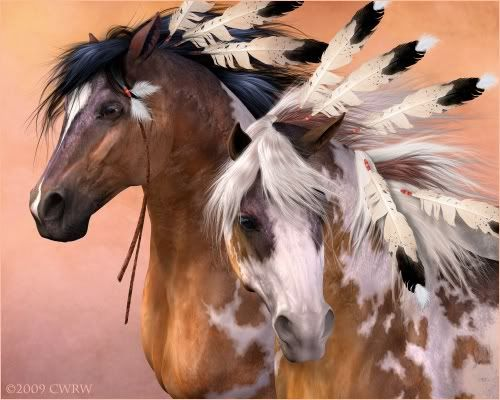 Painted Indian War Ponies Dressed With Eagle  Feathers.