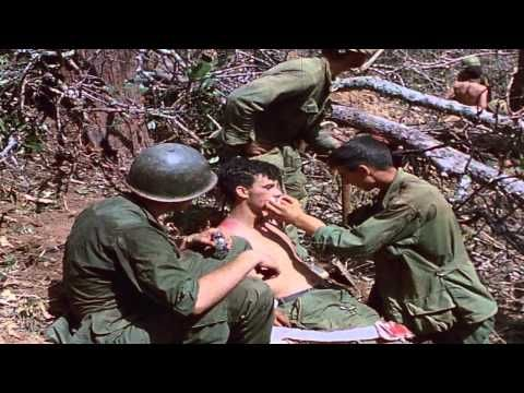 'Vietnam in HD': The Truth About the Vietnam War Told by the People Who Fought It past 2