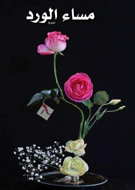 نحن لا نستطيـع إحياء ورود قــد مـاتت لكــن بوسعنـا زرع ورد أجمـل كـذلك هـي الحياه لا تتـوقف بسبب Evening Greetings Good Morning Arabic Floral Wreath
