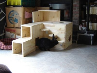 construire une cabane pour son lapin marguerite et cie diy for pets pinterest fils. Black Bedroom Furniture Sets. Home Design Ideas