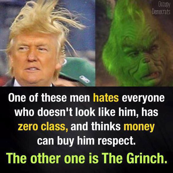 Image result for trump the grinch