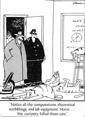 far side idiom
