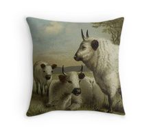 Vintage White Cattle Art on Pillow