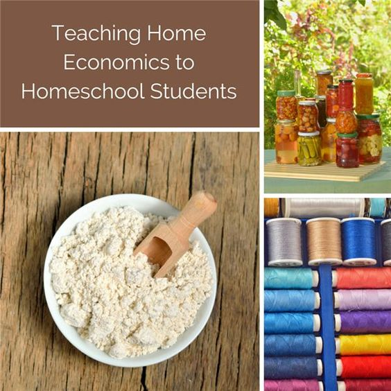 Home economics can be a fun and important part of educating your children. This guide leads you through the steps of creating your own homeschool home economic curriculum, which can be easily personalized to a child's goals, interests and strengths. We'll help you set your goals, and develop classes and lessons to teach your children fundamental skills.