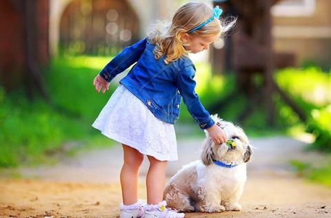 Please Log In Cute Puppy Wallpaper Girl And Dog Baby Dogs