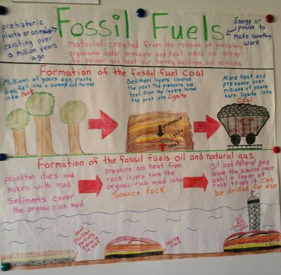 Anyone that knows anything about fossil fuels and is good at writing research papers.?