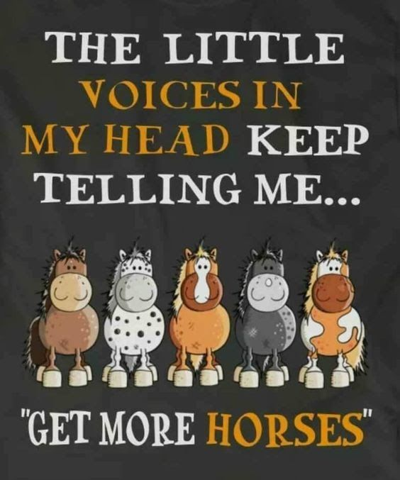 "The little voices in my head keep telling me... ""Get More Horses!"""