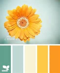 #orangeflower