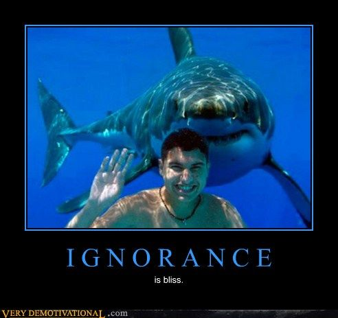 Why is ignorance bliss?