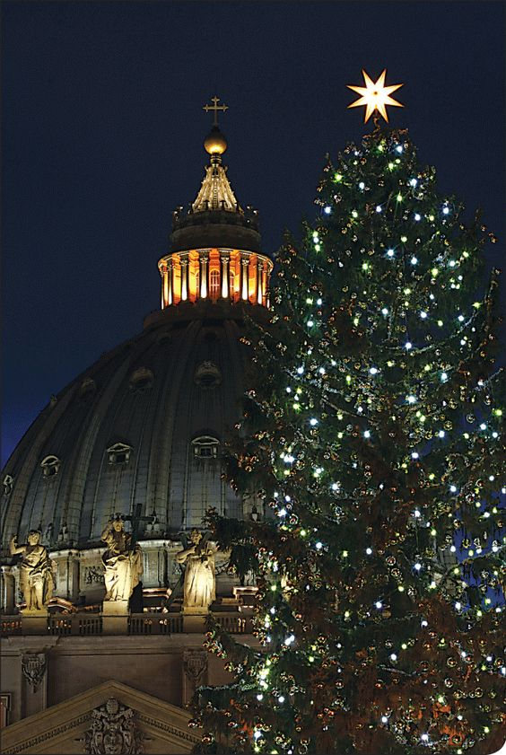 Rome, Christmas Time ( St.Peter Square )